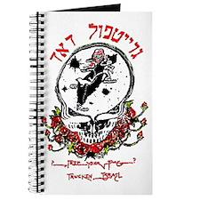 Deadhead Israel Journal