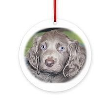 Longhaired Weimaraner Puppy Ornament (Round)