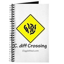C. diff Crossing Sign 01 Journal
