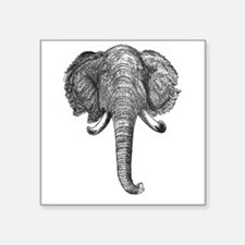 Vintage Elephant Illustration (1891) Sticker