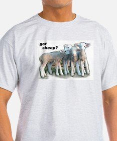 Got Sheep Lambs Women's Pink T-Shirt
