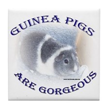 'Guinea Pigs Are Gorgeous' Tile Coaster