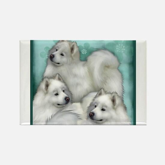 Samoyed Dogs Magnets