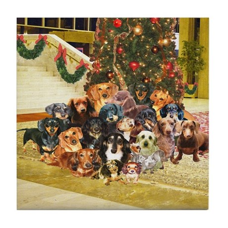 A Dachshund Family Christmas Tile Coaster