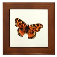 Butterfly 25 Framed Tile