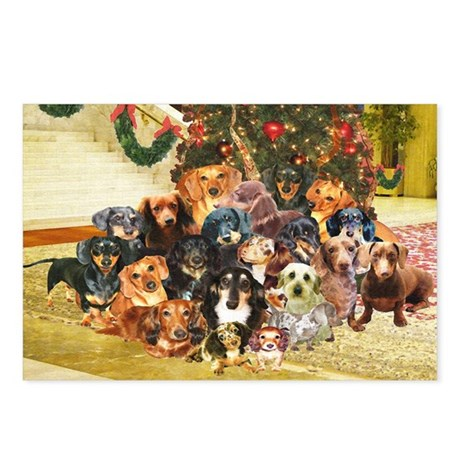 A Dachshund Family Christmas Postcards (Package of