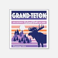 "Cute Grand teton national park Square Sticker 3"" x 3"""