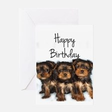 Birthday Yorkshire Terriers Greeting Cards