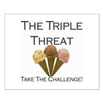 Triple Threat Take the Challe Small Poster