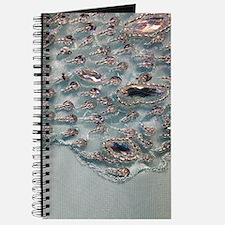 aqua silver sequins lace Journal