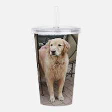 Nala the golden retrie Acrylic Double-wall Tumbler