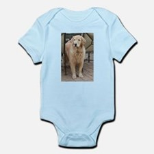 Nala the golden retriever standng under Body Suit