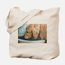 Nala the golden drinking Tote Bag