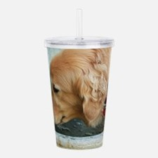 Nala the golden drinki Acrylic Double-wall Tumbler