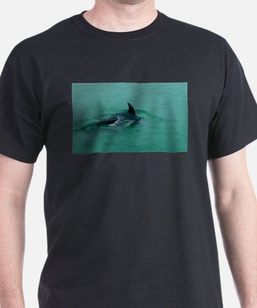 Natural Mother Dolphin and Baby T-Shirt