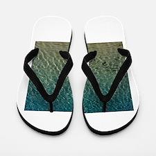 Shark Bite Flip Flops