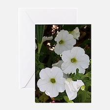 Wonderful White Flowers Greeting Cards