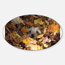 Cairn Terrier Decal