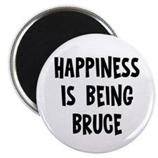 Happiness is being Bruce Magnet
