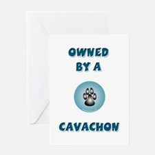 Owned by a Cavachon Greeting Card