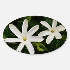 Unique Kahuku hawaii Decal