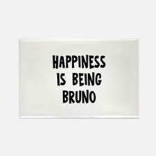 Happiness is being Bruno Rectangle Magnet