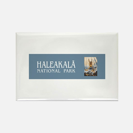 Haleakala National Park, Hawaii Rectangle Magnet