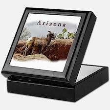 Arizona Mountain Sheep Keepsake Box