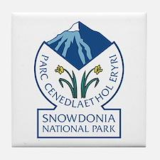 Snowdonia National Park, Wales, UK Tile Coaster