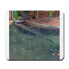 cuban crocodile Mousepad