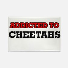 Addicted to Cheetahs Magnets