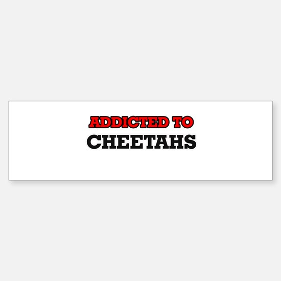 Addicted to Cheetahs Bumper Bumper Bumper Sticker
