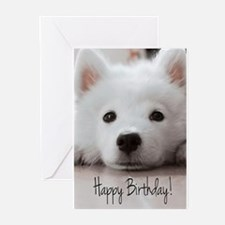 Happy Birthday Samoyed Puppy Greeting Cards