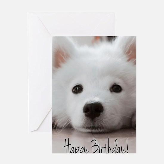 Happy Birthday Samoyed Puppy Greeting Cards