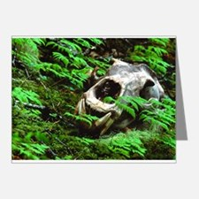 Another Time Grizzly Note Cards (Pk of 10)