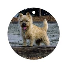 Young Cairn Terrier Ornament (Round)