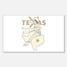 Faded Texas Pinup Decal
