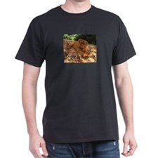 hades-finished-ddb T-Shirt