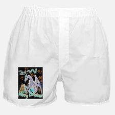 Cute Snow nerds Boxer Shorts