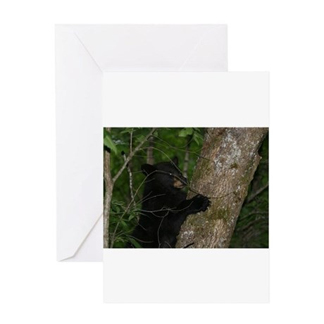 black bear 2007 Greeting Card