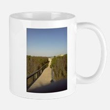 Long Board walk to Ocean on Cumberland Island Mugs