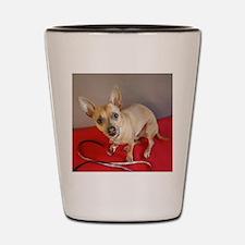 Chihuahua Shot Glass