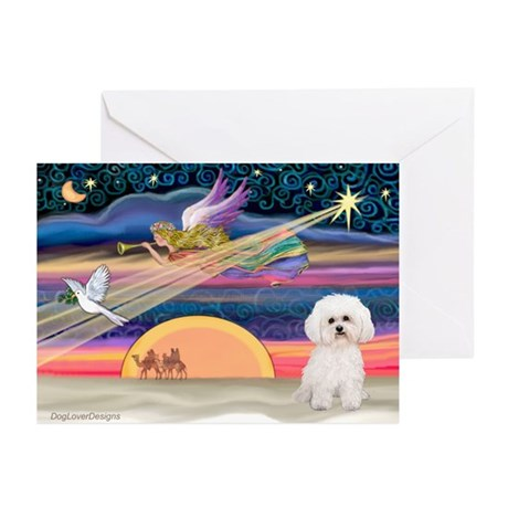 Xmas Star & Bichon Greeting Cards (Pk of 10)
