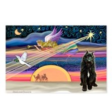 Xmas Star & Bouvier Postcards (Package of 8)