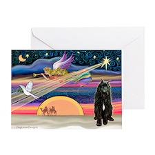 Xmas Star & Bouvier Greeting Card