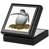Sea turtle hatchling Square Keepsake Boxes
