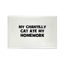 My Chantilly Cat Ate My Homew Rectangle Magnet
