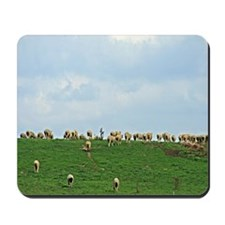 Sheep in a Field Mousepad