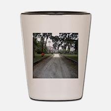 Unique Island Shot Glass