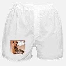 Irish Terrier Turkey Boxer Shorts